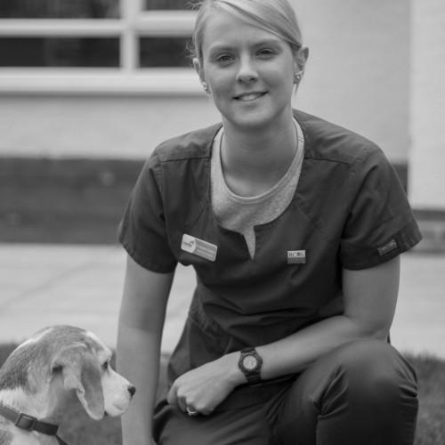 Dr Rachel Caines BVSc MRCVS